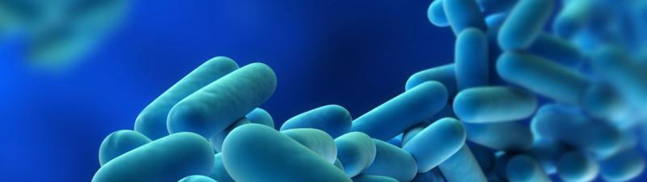 First aid to avoid legionella growth! | PCA Water